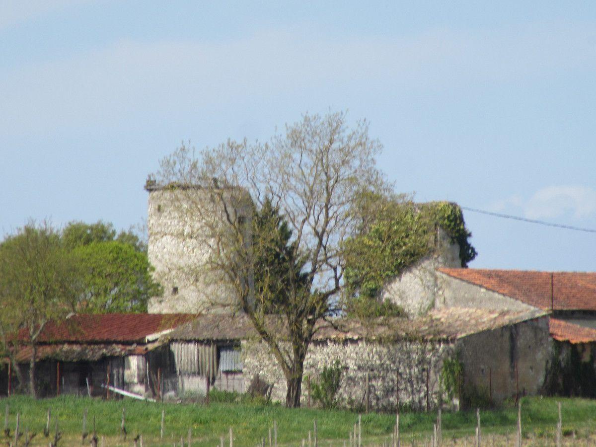 Les moulins  et asperges de Campugnan ...