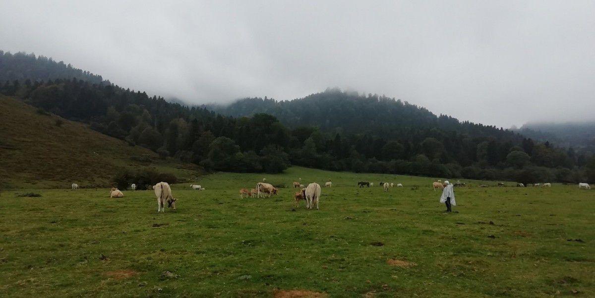 Séjour au Pays Basque (septembre 2019): les gorges de Kakuetta