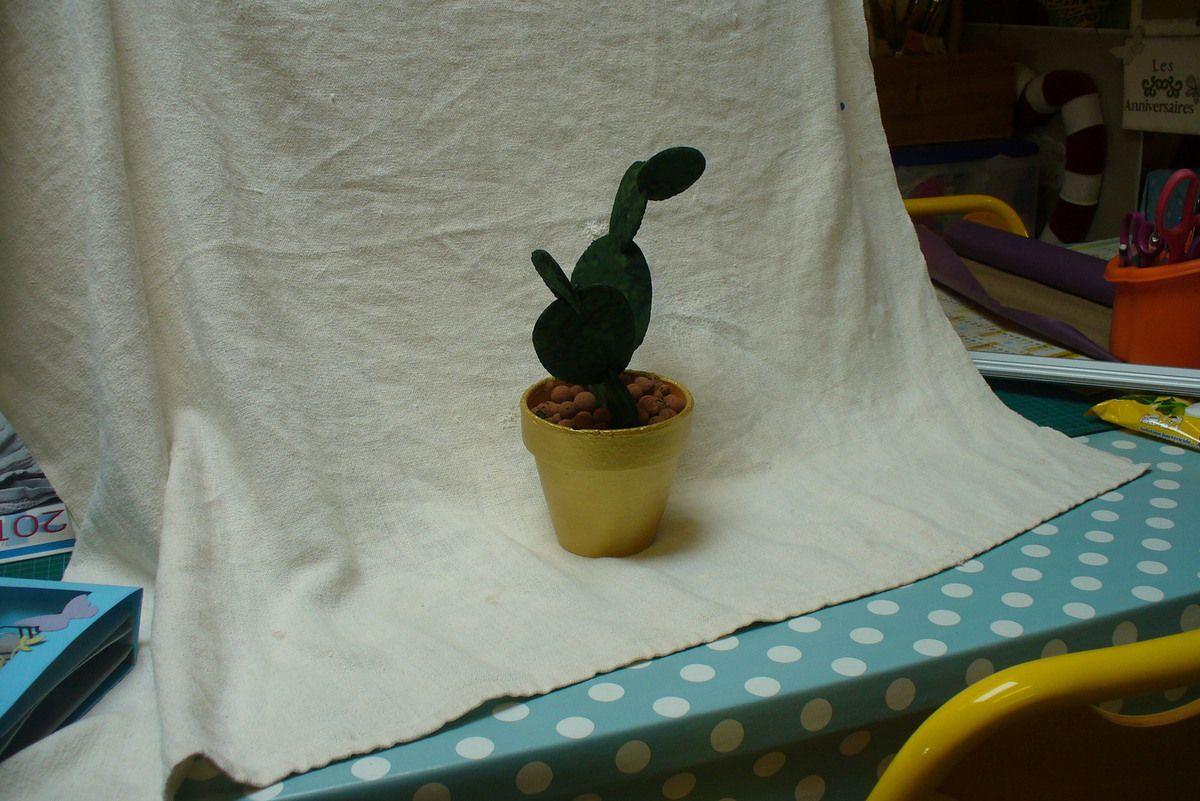 dans la vie il ya des cactus....