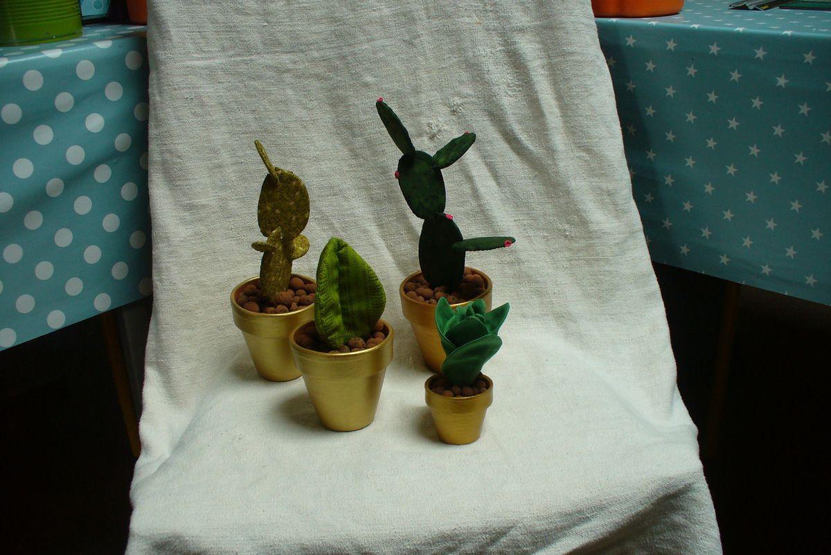 re-ouille encore des cactus