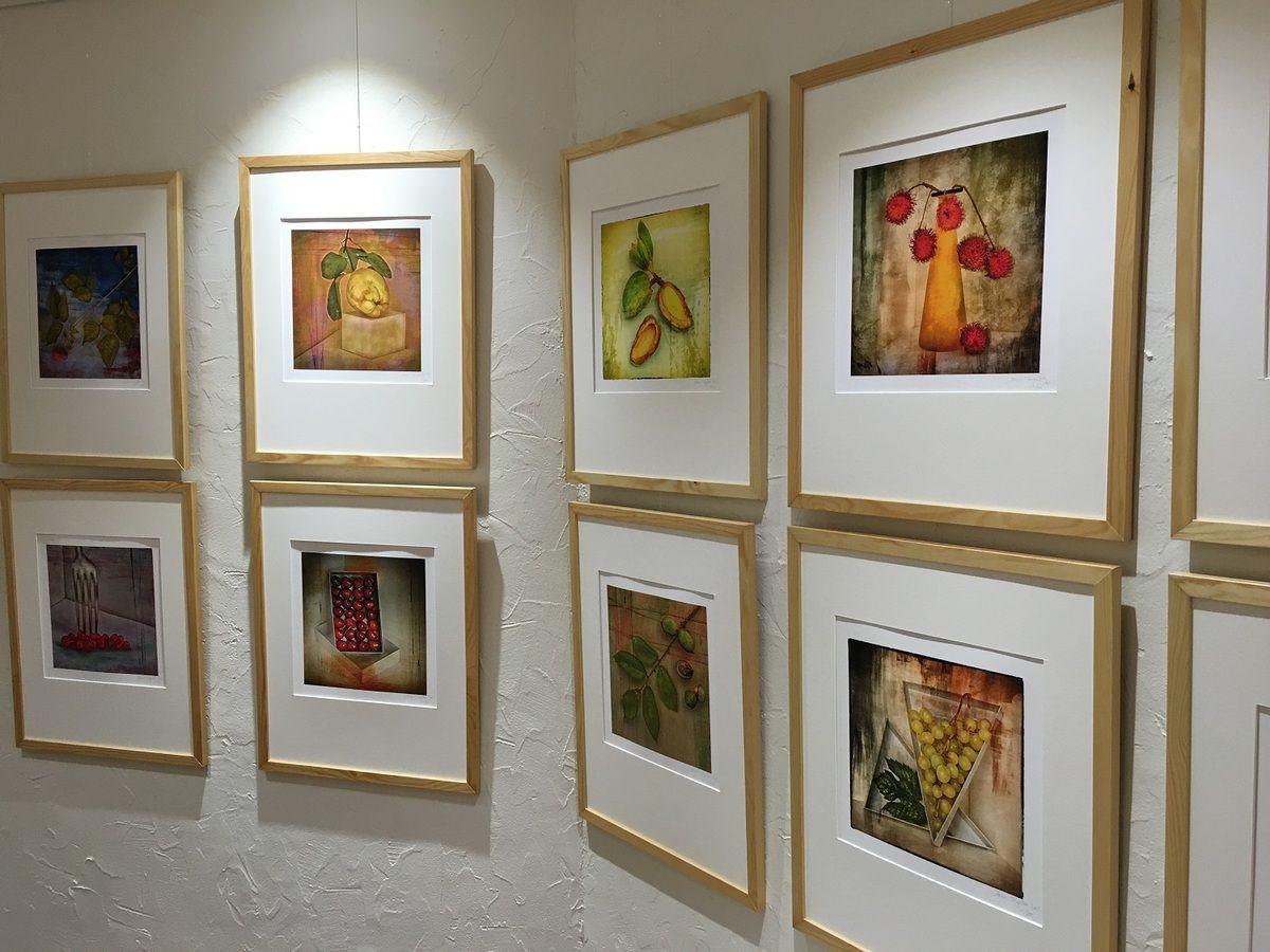 Dernières heures de l'exposition Portraits de Fruits par Marc Trigalou  à Aulnay-sous-Bois