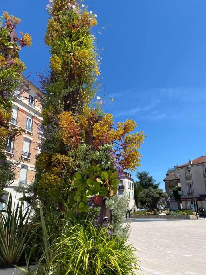 La place Abrioux à Aulnay-sous-Bois : nouveau paradis de la biodiversité urbaine