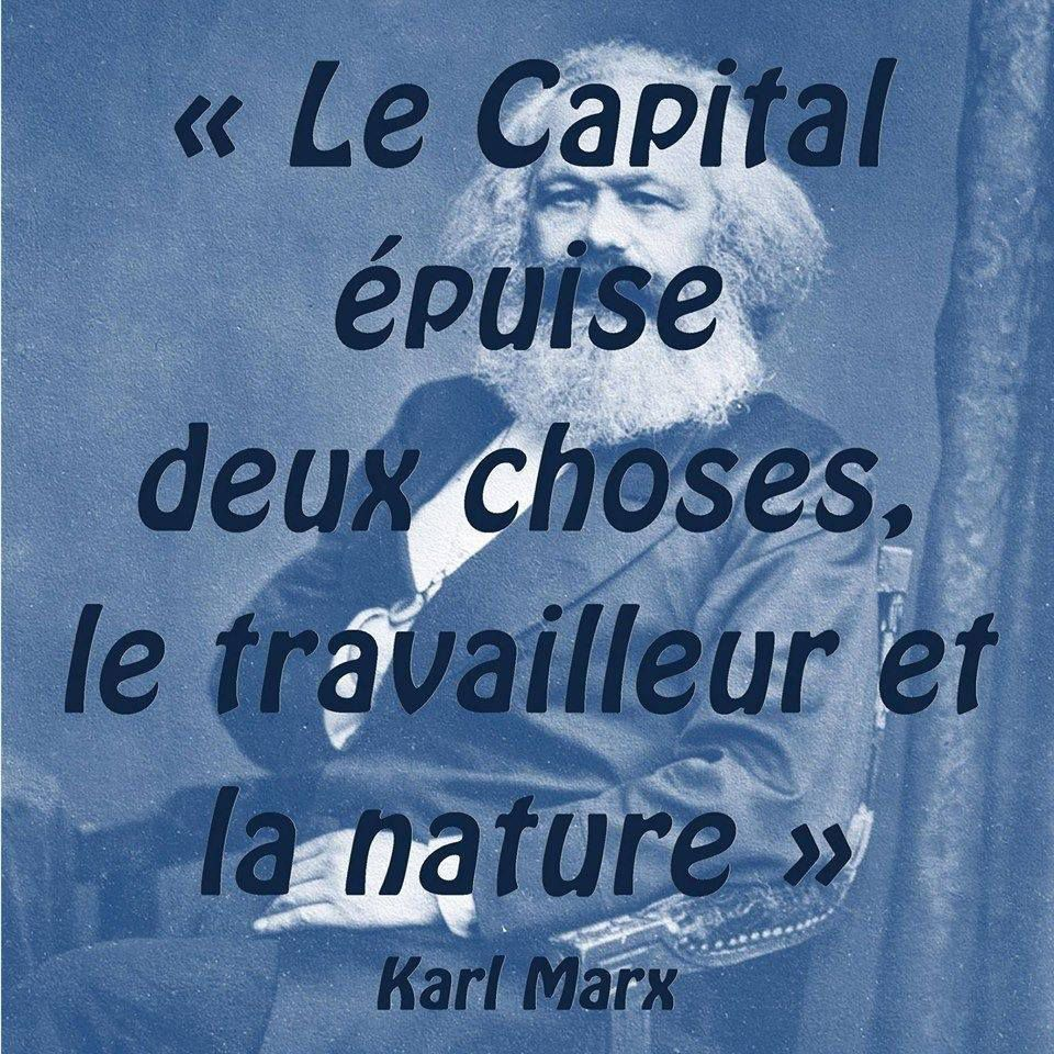 MARX - CAPITAL ET NATURE