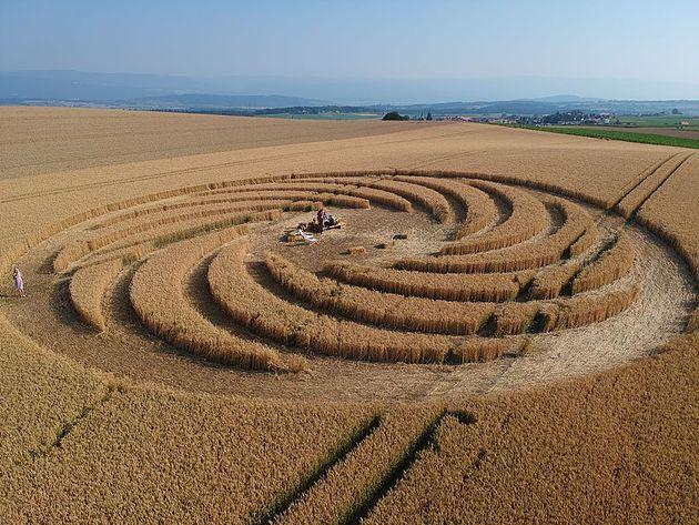 Crop Circle à Baggwilgraben en Suisse, apparu le 16 juin 2018