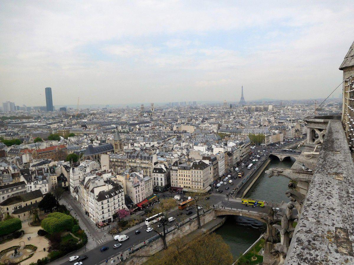 LES YEUX D'EMMA... NOTRE DAME DE PARIS.