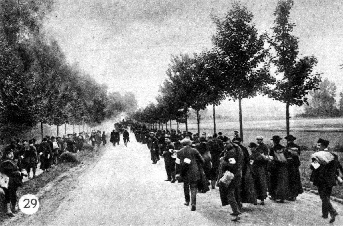 Population belge fuyant Tirlemont, 1914 (Cegesoma)