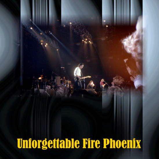 """Il s'agit du plus grand concert de la tournée, le groupe jouant à l'extérieur pour 23 000 personnes. Cependant, une partie de la foule se met en avant, avec la pression, la situation devient hostile. Pendant The Unforgettable Fire, Bono explose avec la foule qui se débat, mettant fin brusquement à la chanson. Il décide alors de jouer """"Pride"""", pour apaiser l'ambiance, au lieu de """"Wire"""". La chanson est rejouée à la fin, comme d'habitude. C'est l'un des deux seuls concerts avec deux représentations de """"Pride""""; l'autre est une répétition générale avec un public à Hershey, Pennsylvanie, le 7 août 1992."""