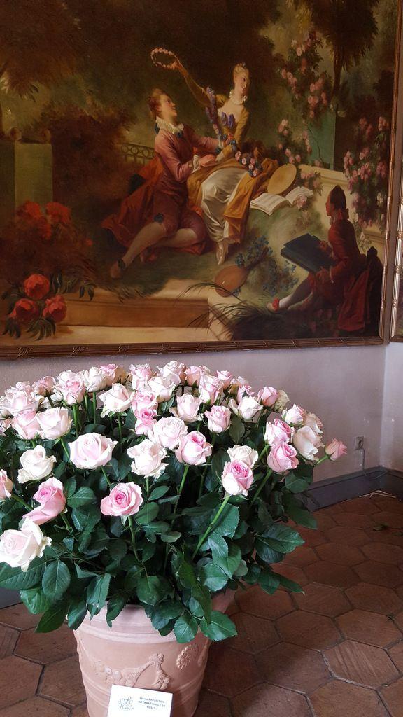 La grâce des roses à Grasse