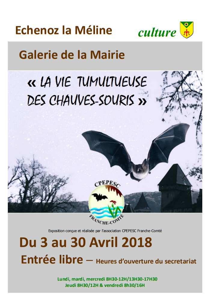 Galerie de la Mairie : Exposition prolongée jusqu'au 22 mai