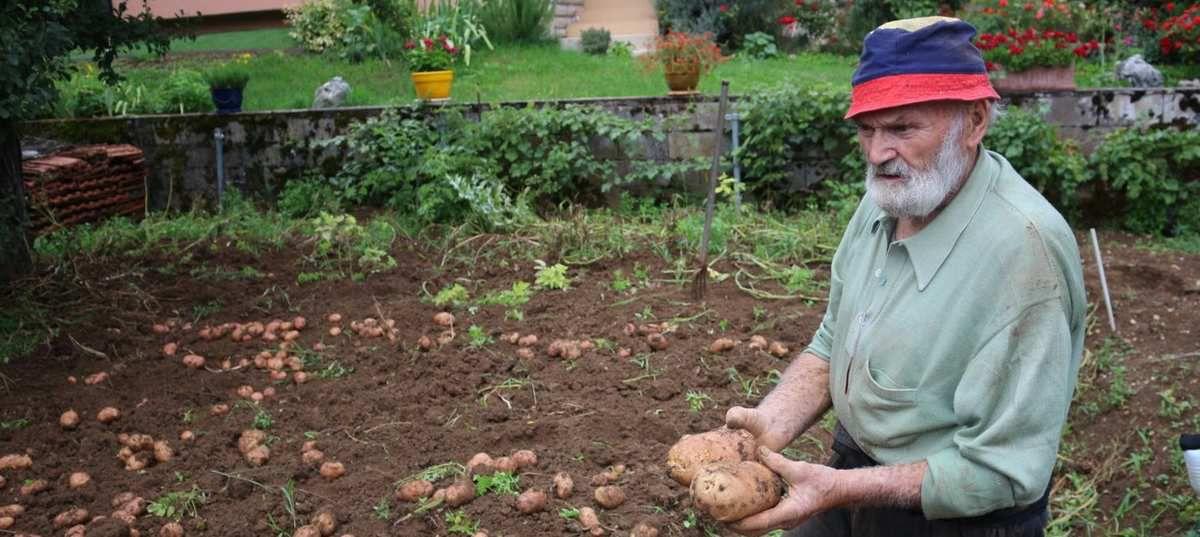 Un jardinier pas tout à fait comme les autres