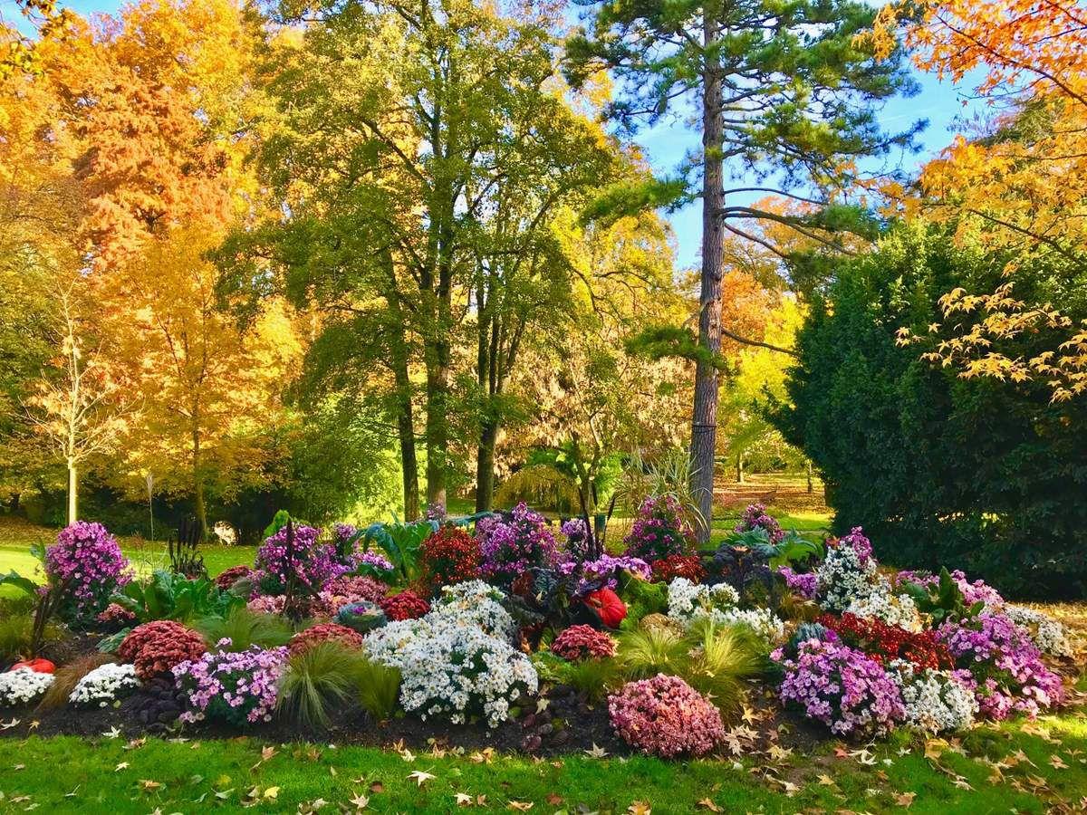 Automne au Jardin des Plantes