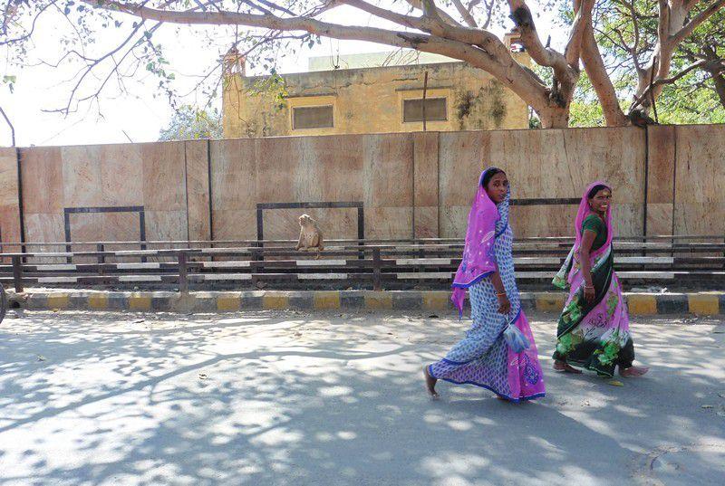 Chapitre 2137 : sur Parikrama Marg