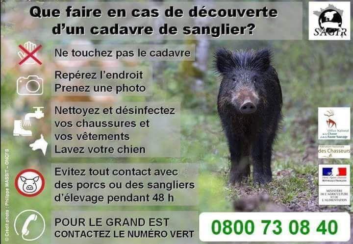 URGENT - Information Peste Porcine Africaine