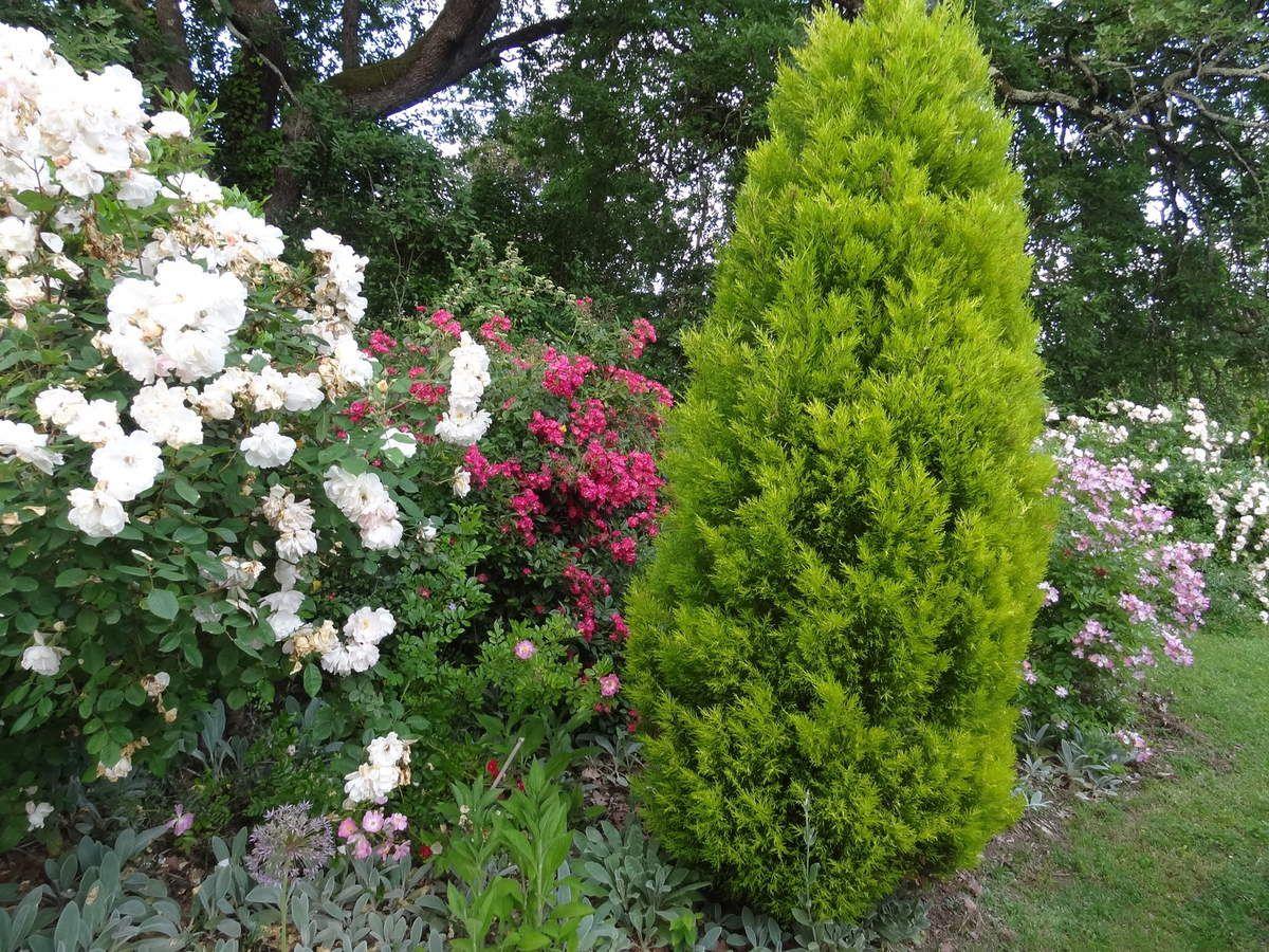 Betchat 09 (jardins de la roseraie)