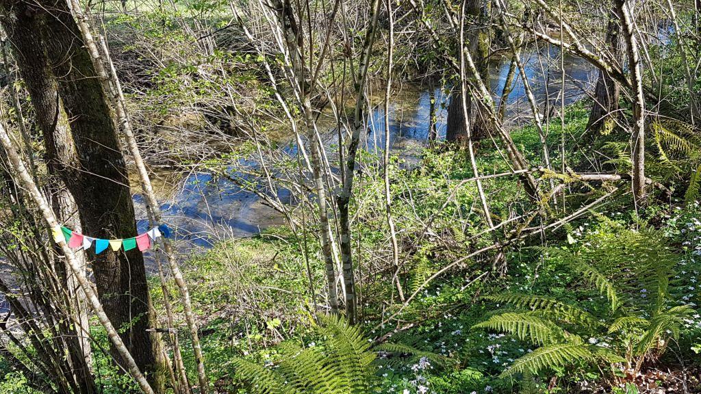 Cassagne - à 1 km de chez vous... la fontaine et le bois du Barry