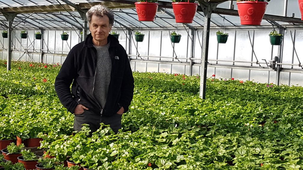 Saint-Martory - Horticulteurs, pépiniéristes: la vente directe autorisée pour plants potagers