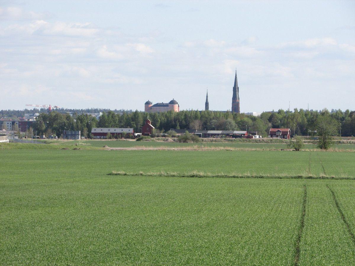 Le vieux Uppsala (Gamla Uppsala)