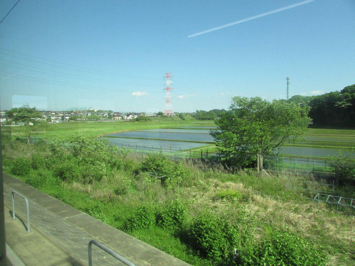 Sur la route qui mène à Tokyo.