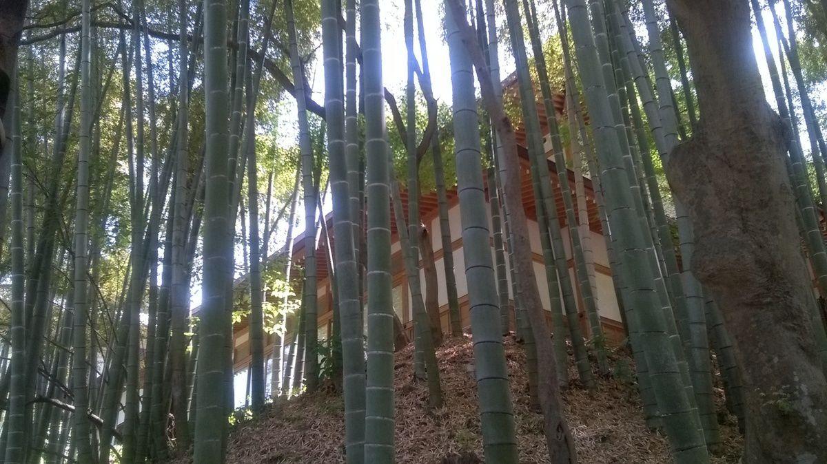 Le temple Engaku-ji de Kamakura.
