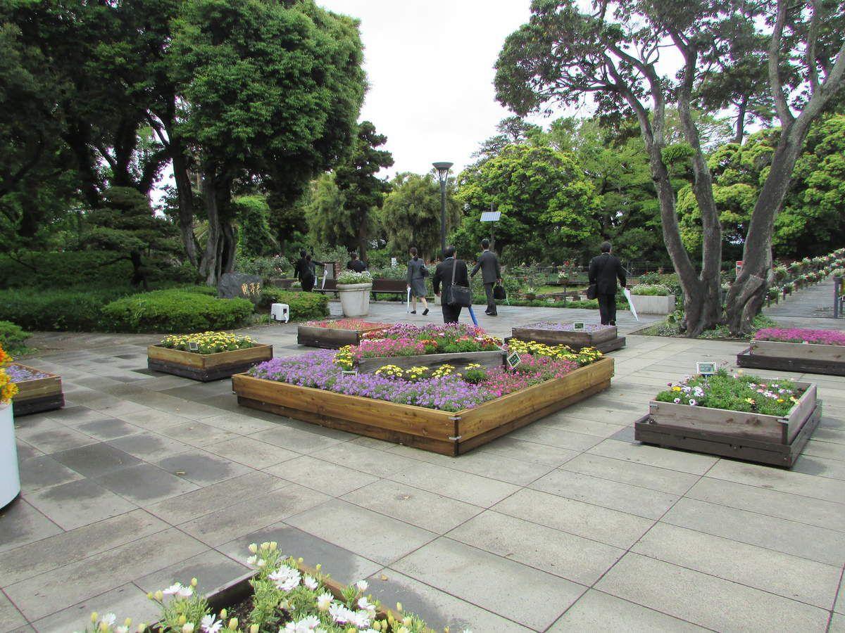 Le Samuel Cocking Garden d'Enoshima.