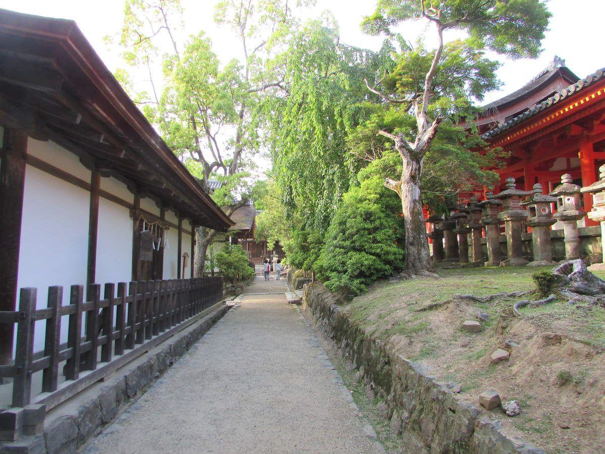 Le temple Kasuga Taisha de Nara.