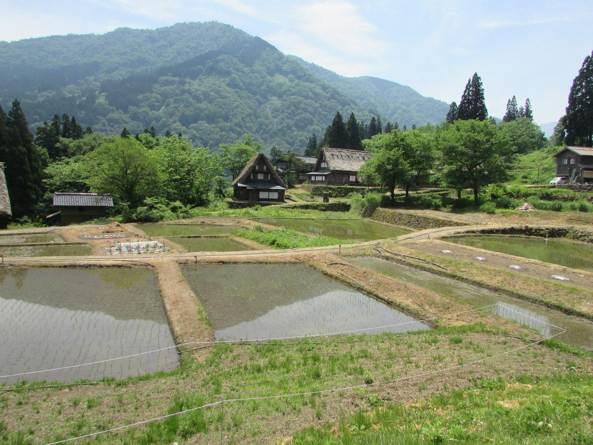 Excursion à Ainokura.