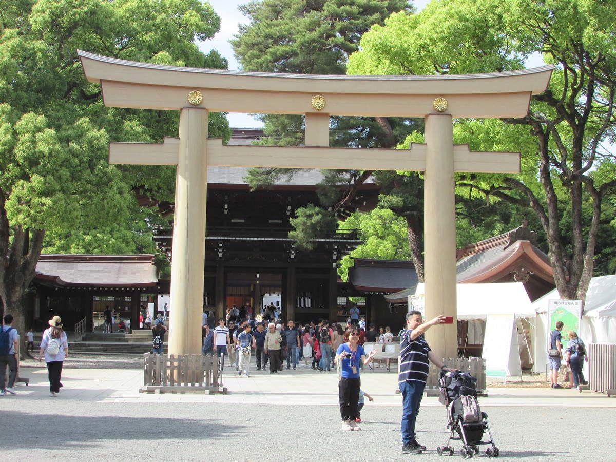 Le jardin Meiji Jingu dans le parc Yoyogi de Tokyo.