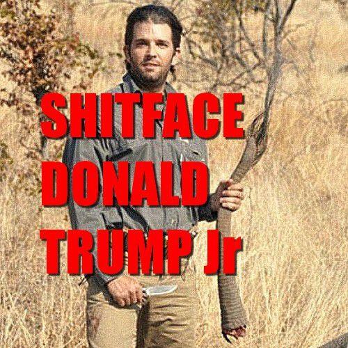 Donald Shitface Trump Jr part à la chasse aux éléphants