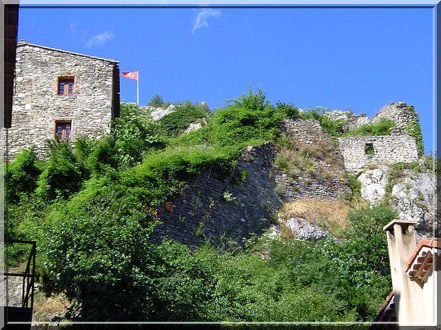 Depuis le bourg, il est difficile de voir le château sur la colline