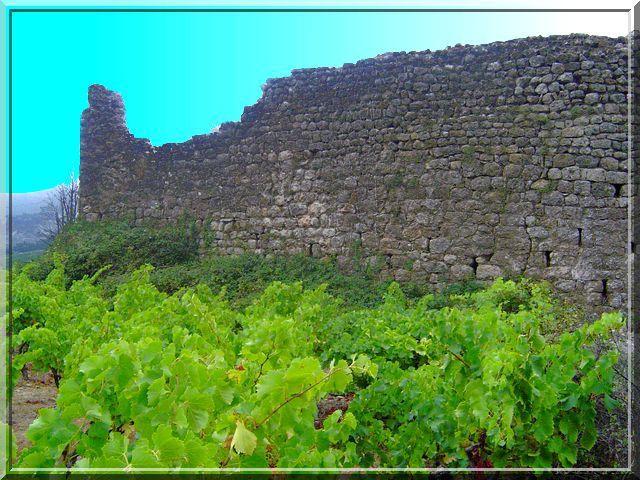 Diaporama château de Domneuve