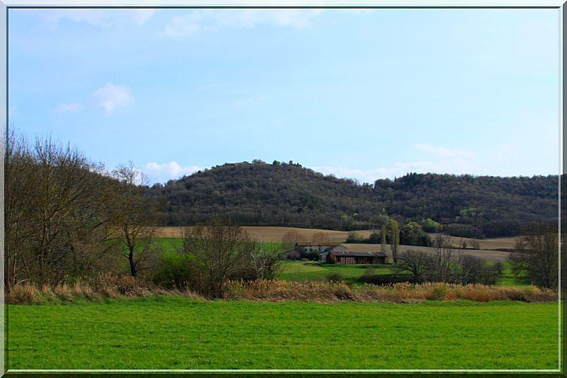 Que voyez vous sur cette colline boisée ?