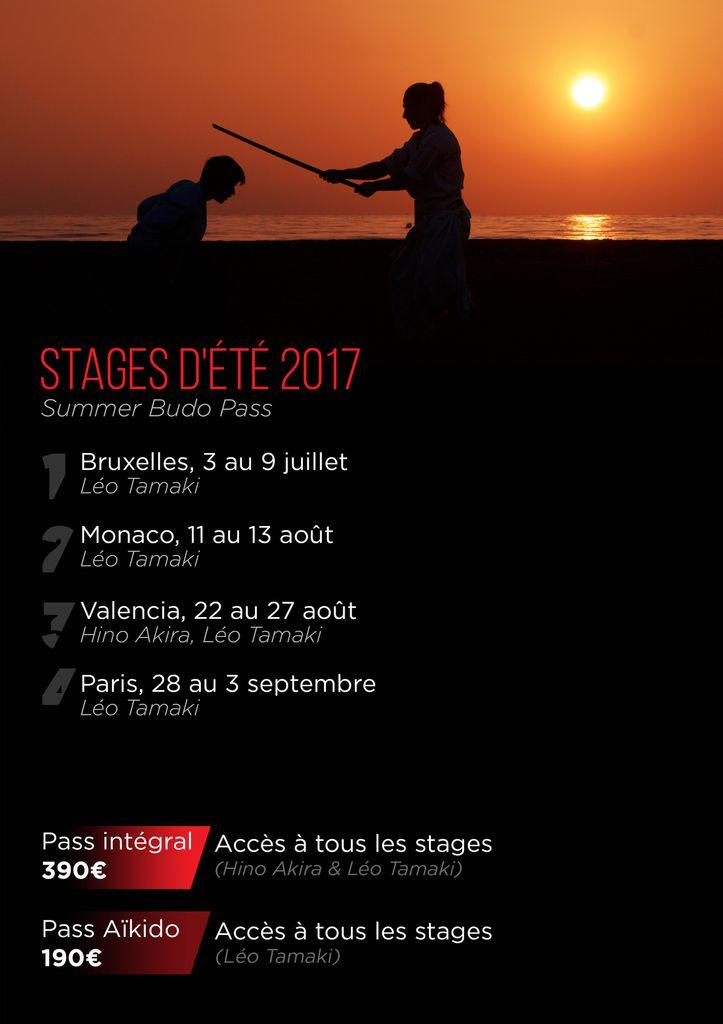 Stages d'été 2017, Aïkido, Shiatsu, Hino Budo