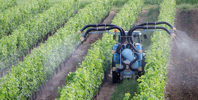 De l'irresponsabilité crasse des syndicats d'AOC face à la consultation du Ministère de l'Agriculture sur l'arrêté des produits phytopharmaceutiques.