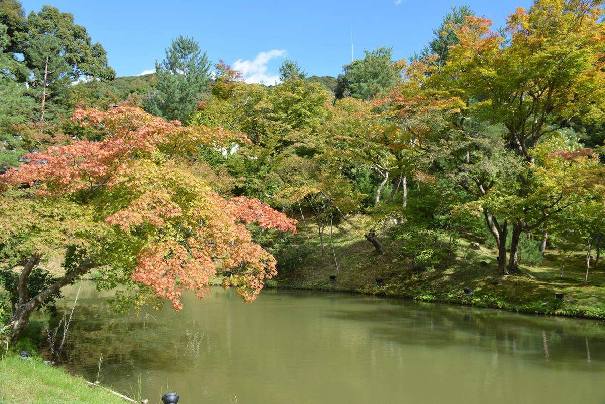 Kyoto - Kōdai-ji - Photos: Lankaaart (c)