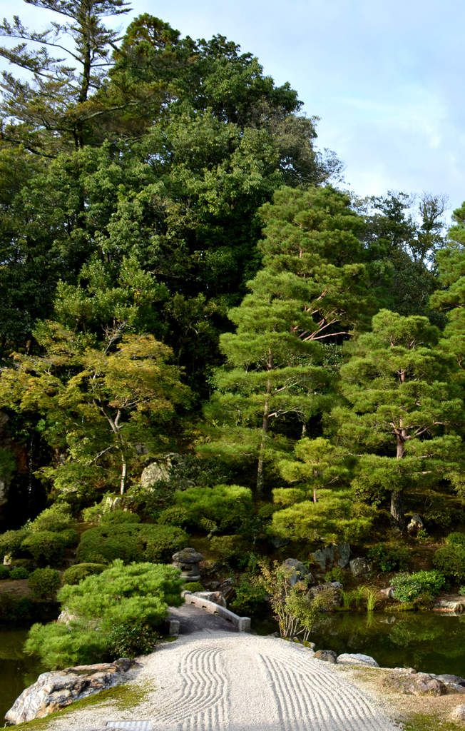 Kyoto - Ninna-ji  - Photos: Lankaart (c)