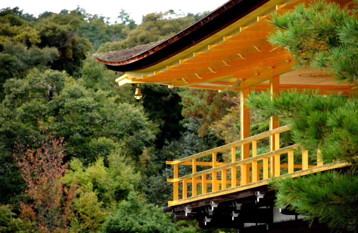 Kyoto - Kinkaku-ji - Le Temple d'Or - Photos: Lankaart (c)