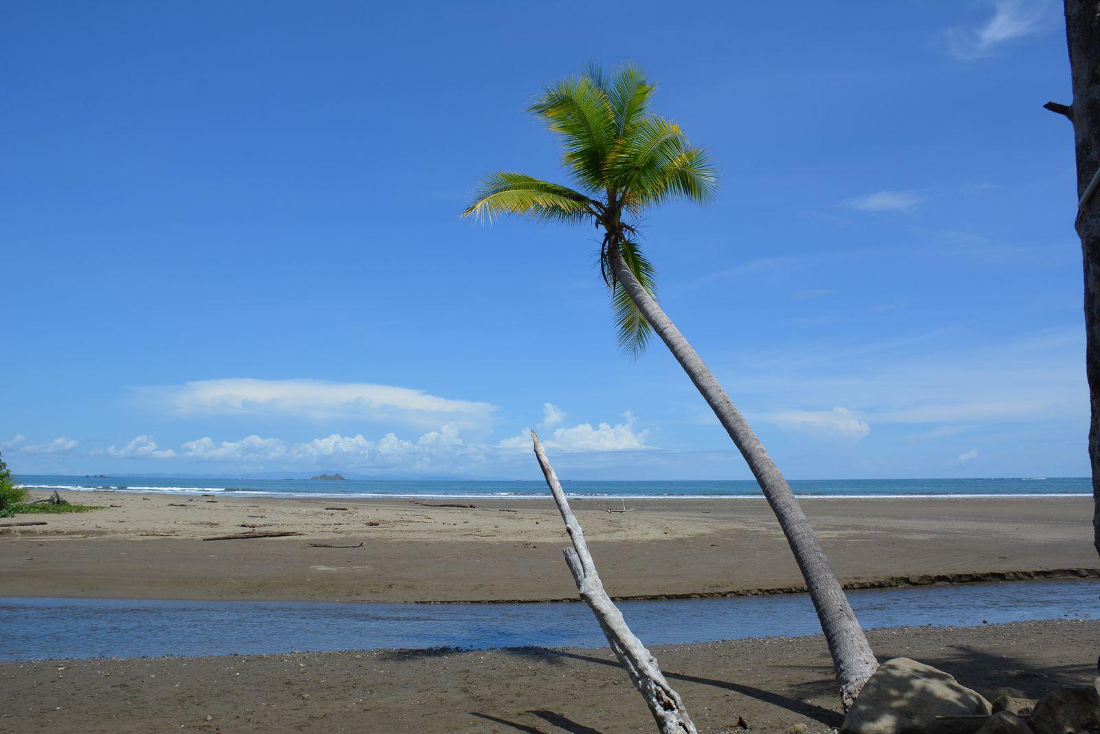 Costa - Rica - Punta Uvita - Photos: Lankaart (c)