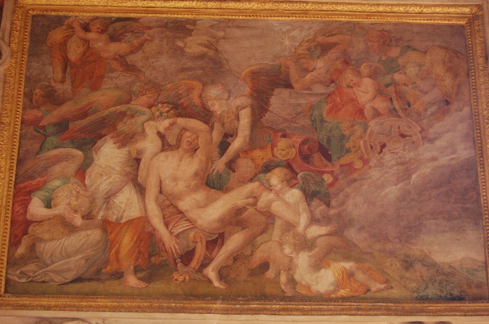 Château de Fontainebleau - Galerie de François Ier - Photos: Lankaart (c)