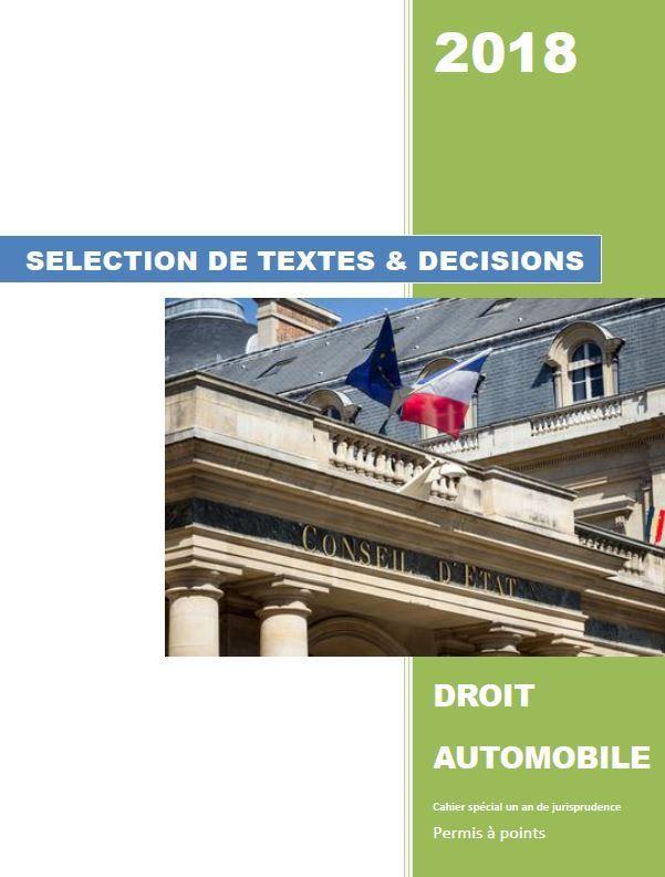 STDDA Cahier spécial un an de jurisprudence permis à points