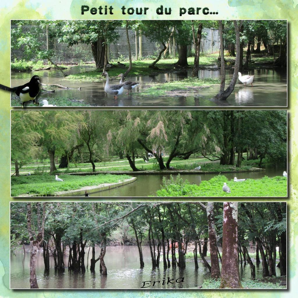 Pôle nature du Marais aux oiseaux...