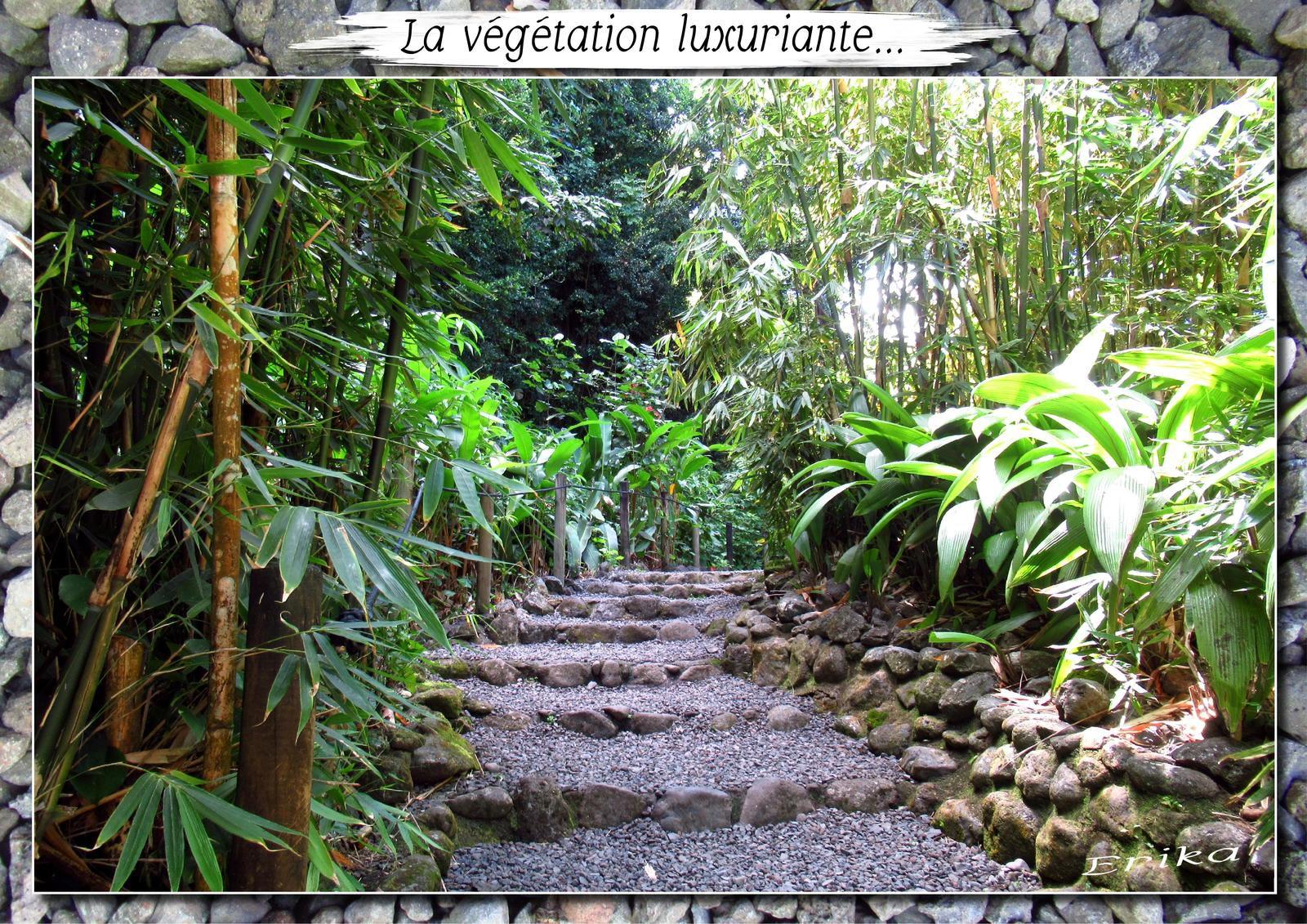 Grottes de Mara'a à Tahiti...