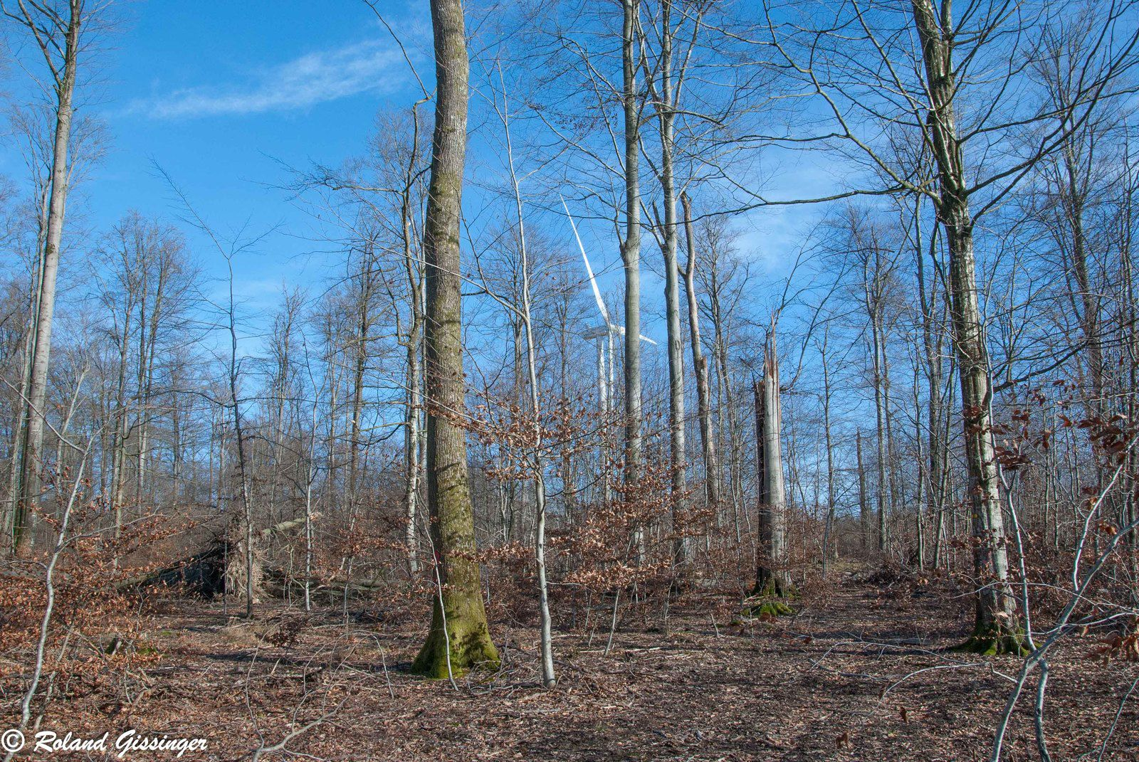 Dégâts liés au vent parc éolien de Herbitzheim février 2020