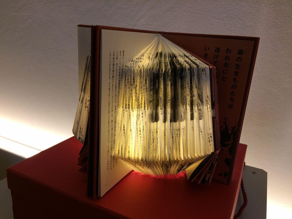 lampe de livre