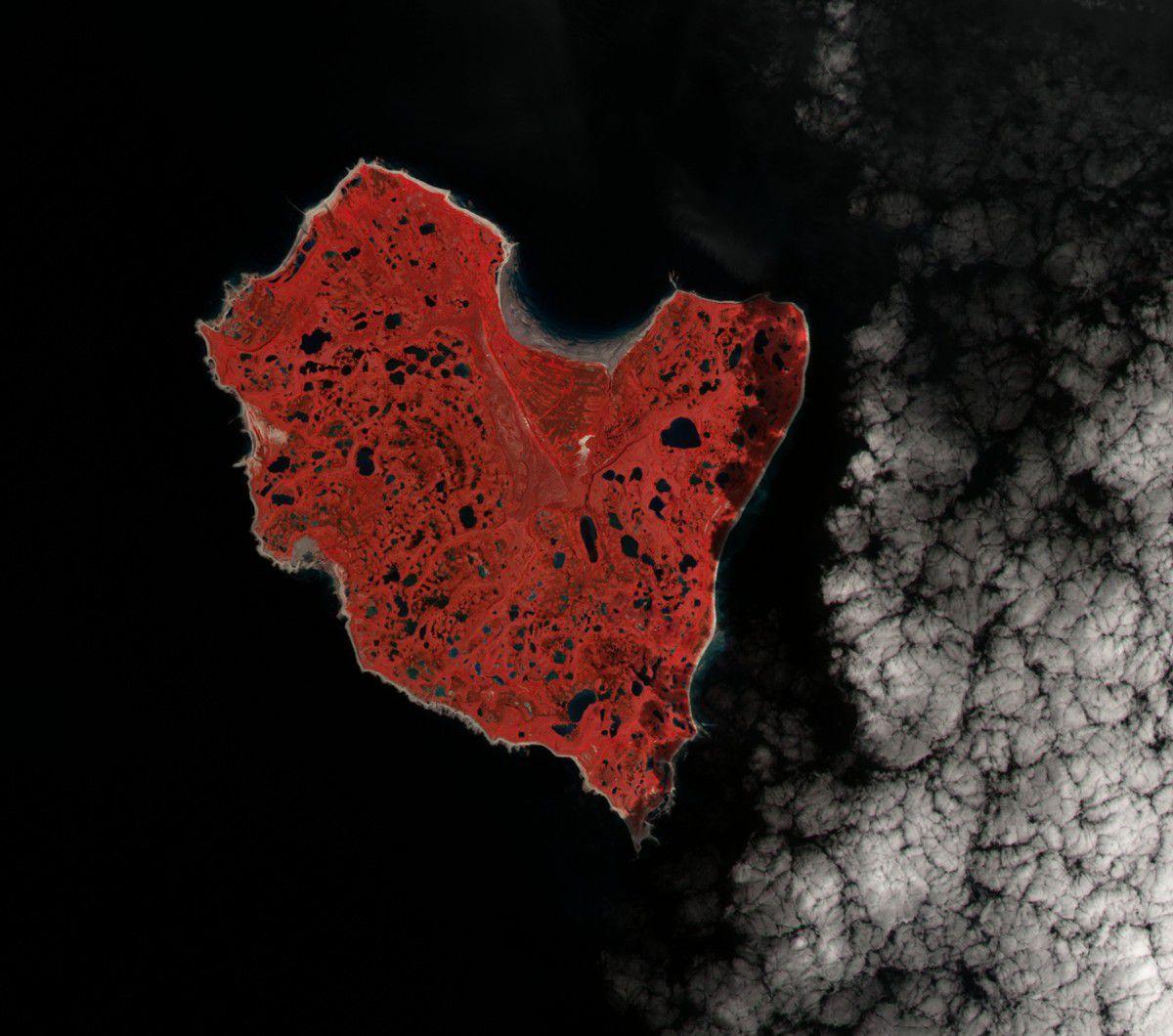 Saint-Valentin - coeur vu du ciel - île en forme de coeur - satellite - amoureux - rouge - observation de la Terre