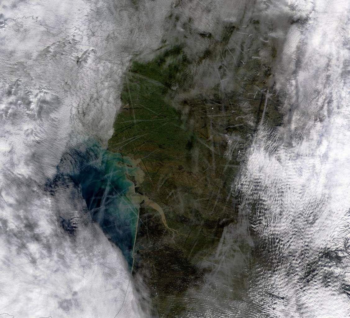 Contrails - Cotra - Traînée de condensation - Avions - nuages - cirrus - Satellite - Terra - Modis - Trafic aérien - aircraft - aviation - meteo - météorologie