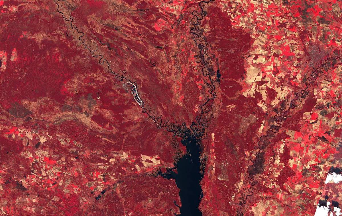 Tchernobyl - Sentinel-2 - Zone d'exclusion - Agriculture - Copernicus - NIR - Proche infrarouge - catastrophe nucléaire - satellite