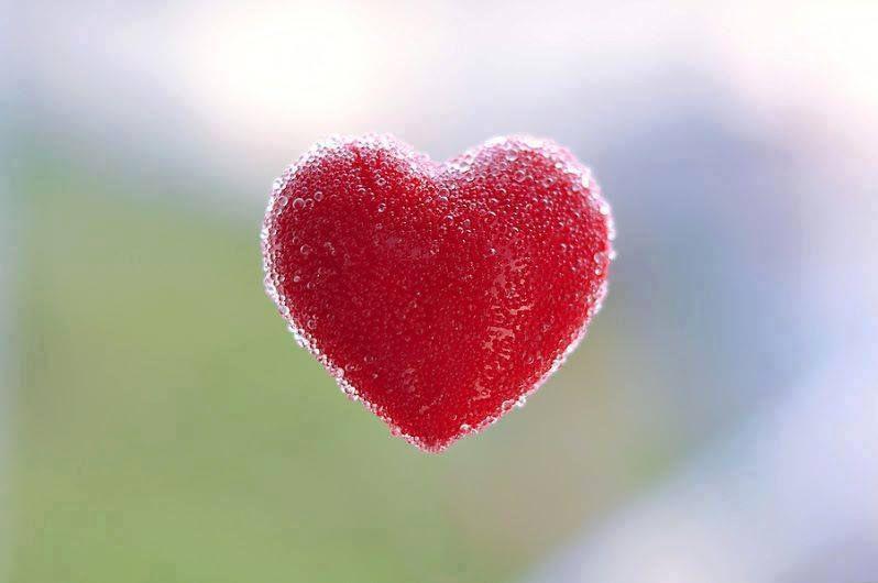 Branchez-vous sur l'amour! Transformez-vous en amour !