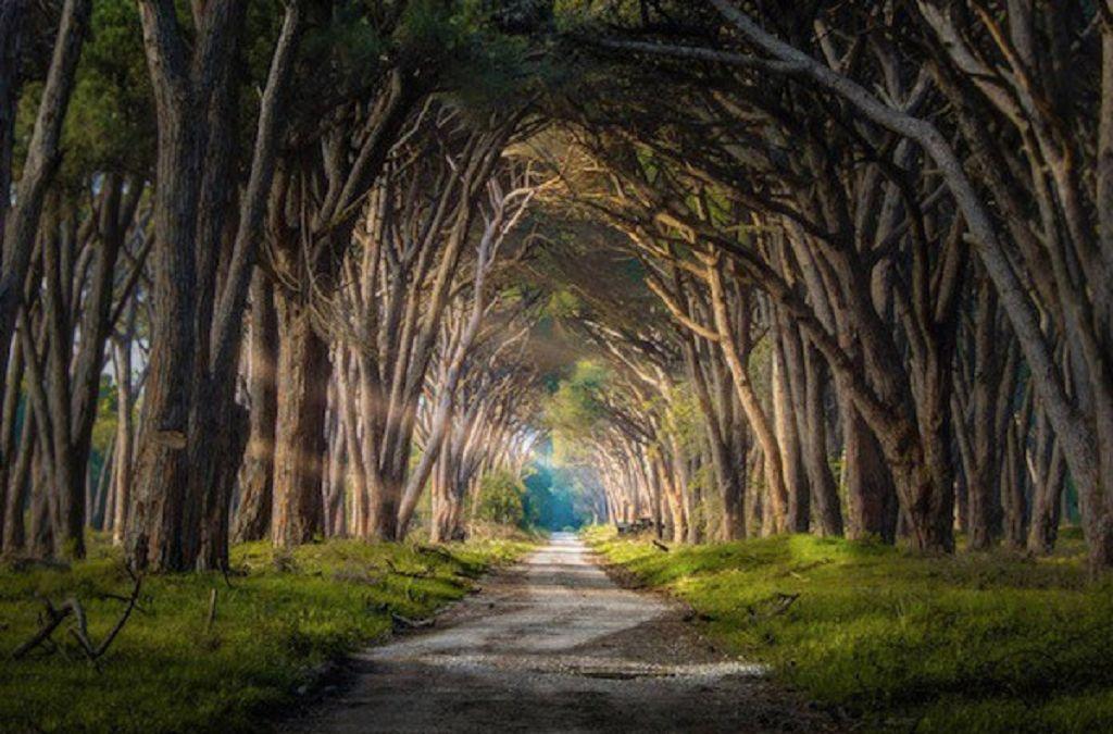 Est-ce que Vous Êtes sur Votre Chemin le Plus Élevé ?