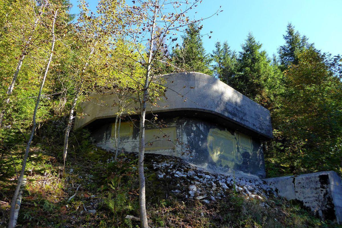 Un bunker Suisse caché en forêt