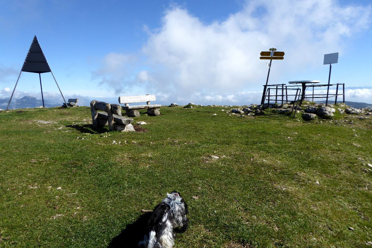 Et voilà le sommet de la Dent de Vaulion, 1482,6 mètres d'altitude